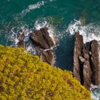 Italian Riviera Part I: Cinque Terre